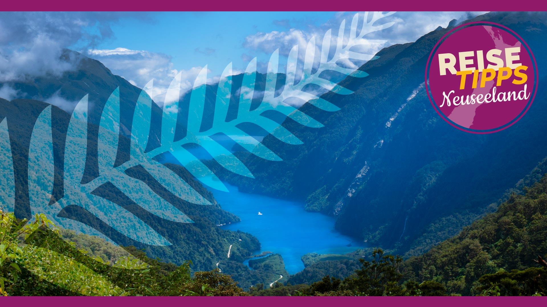 Internet Neuseeland